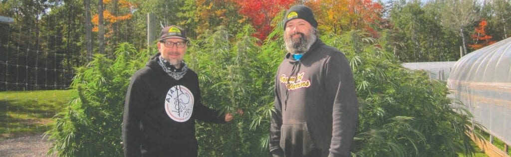 Patrick Finnegan, left, and Eric Pollard have formed and transformed Finnegan's Farm several times since it started in 2006. Now their focus is on growing craft hemp plants for CBD oil. Submitted photos.
