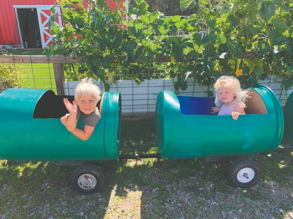 Leo and Lucy Avelsgard enjoy a barrel train ride around the farm at Cook's Country Connection, capturing all of farm's wonderful sights and sounds. Submitted photos.