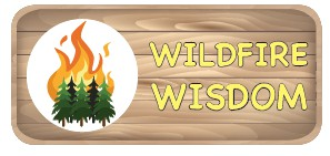 Springtime wildfire resiliency tips to protect your property
